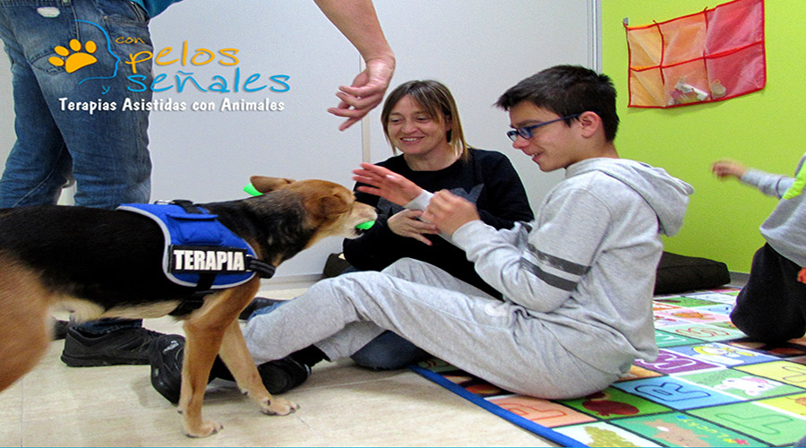 Ocio_asistido_animal