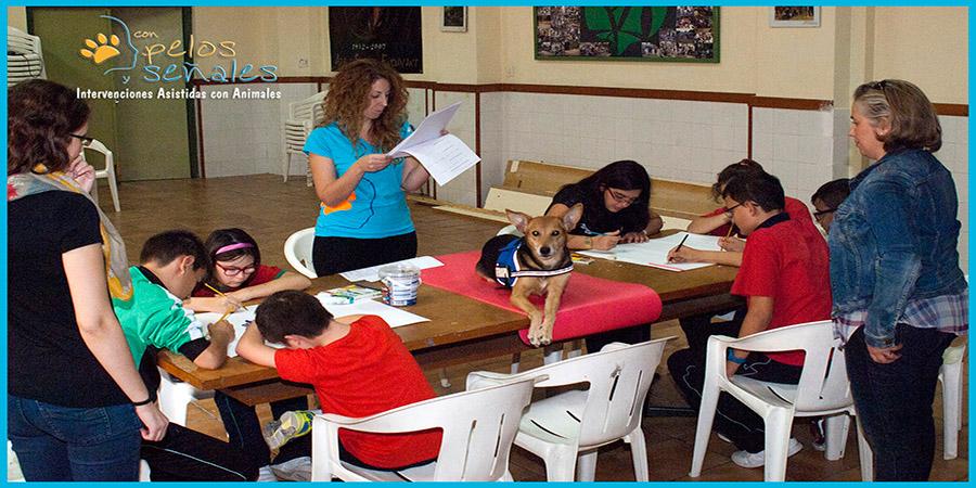 perrro_educacion_asisitida