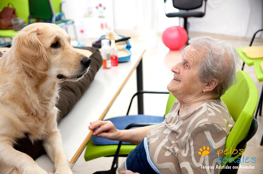 terapia_asistida_animales_con_animales